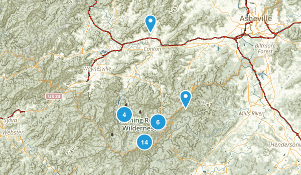 Canton, North Carolina Forest Map