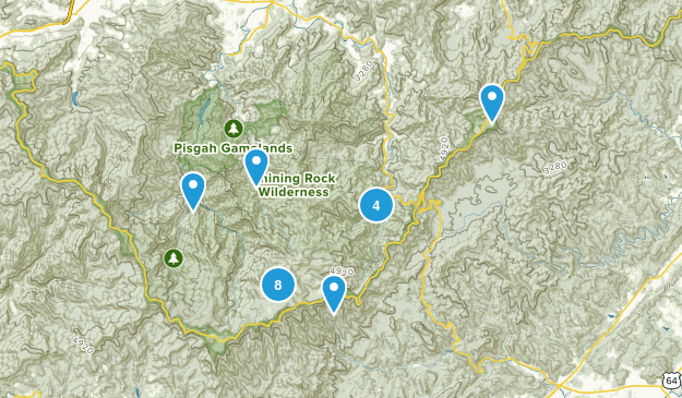 Canton, North Carolina Wildlife Map