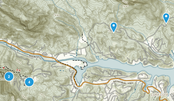 Lake Lure, North Carolina Forest Map