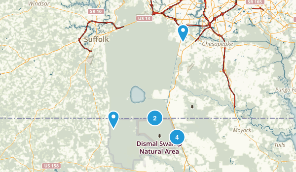 South Mills, North Carolina Forest Map