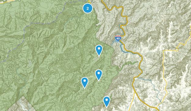 Waynesville, North Carolina Kid Friendly Map