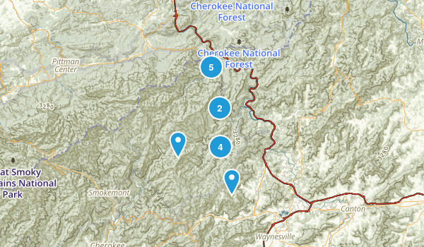 Waynesville, North Carolina Walking Map