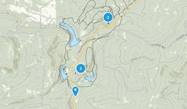 Wilburton, Oklahoma Forest Map
