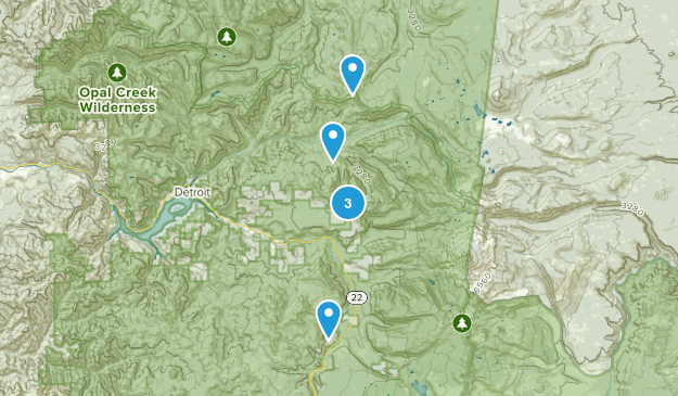 Breitenbush, Oregon Forest Map