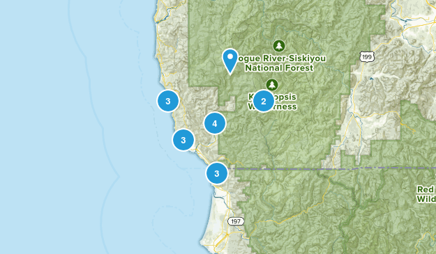 Brookings, Oregon Forest Map
