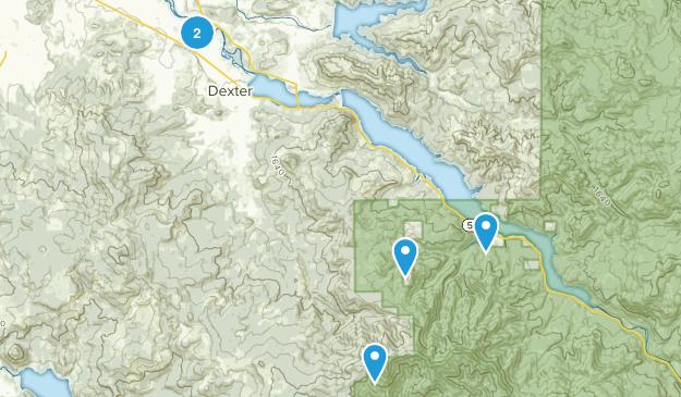 Dexter, Oregon Forest Map