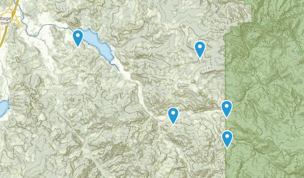 Dorena, Oregon Wild Flowers Map