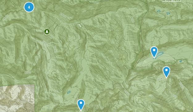 Elkhorn, Oregon Dogs On Leash Map
