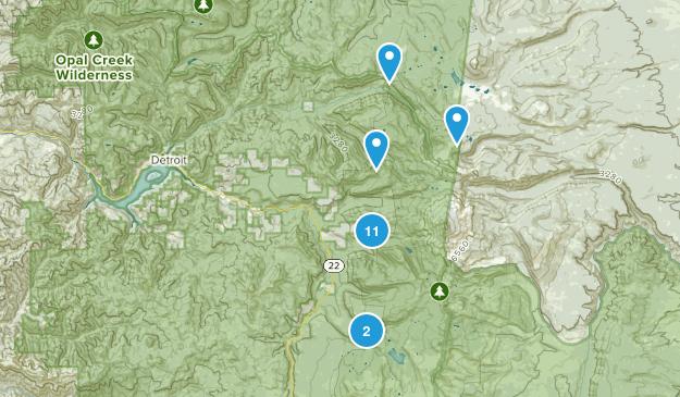 Idanha, Oregon Forest Map