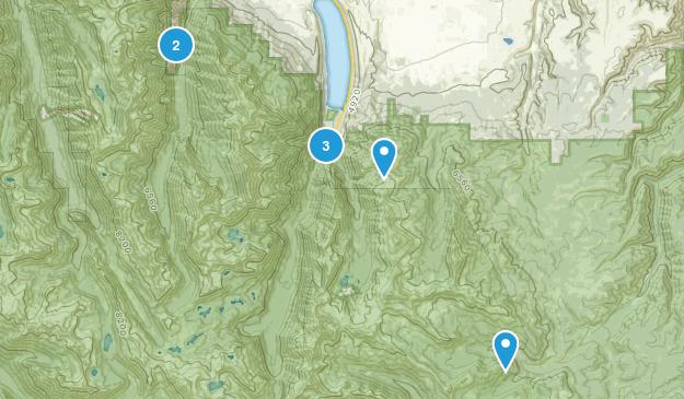 Joseph, Oregon Dogs On Leash Map