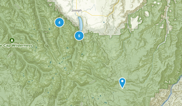 Joseph, Oregon Forest Map