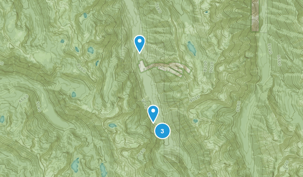 Lostine, Oregon Wildlife Map