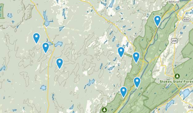 Dingmans Ferry, Pennsylvania Forest Map