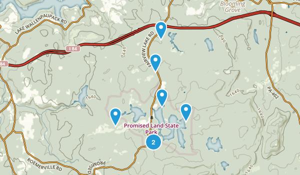 Greentown, Pennsylvania Forest Map