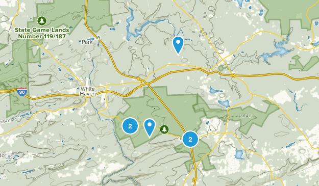 Lake Harmony, Pennsylvania Forest Map
