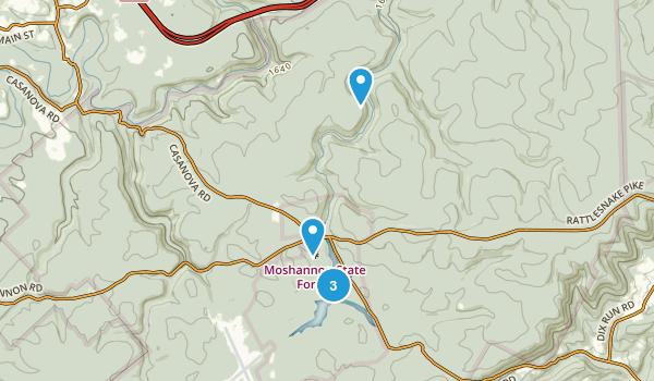 Philipsburg, Pennsylvania Forest Map