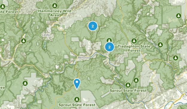 Renovo, Pennsylvania Dogs On Leash Map