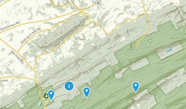 Spring Mills, Pennsylvania Birding Map