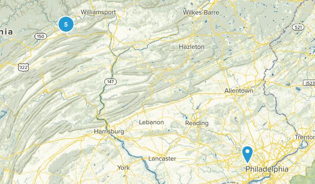 Wayne, Pennsylvania Birding Map