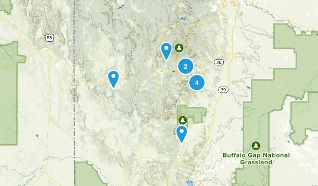 Custer, South Dakota Wild Flowers Map