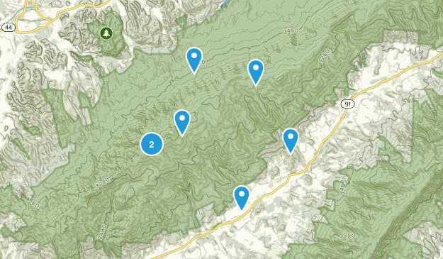Elizabethton, Tennessee Forest Map