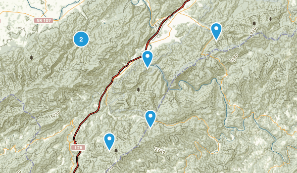 Erwin, Tennessee Forest Map