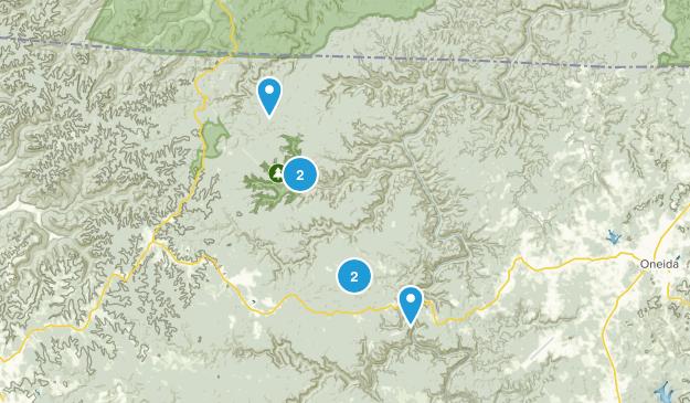 Oneida, Tennessee Wildlife Map