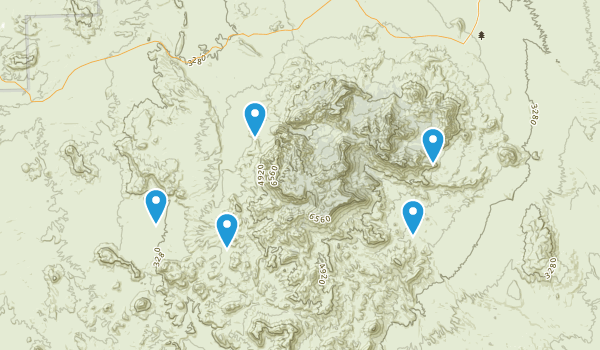 Big Bend National Park, Texas Forest Map