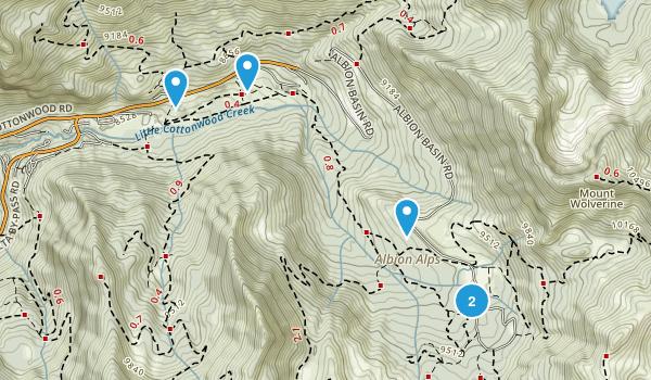Alta, Utah Forest Map