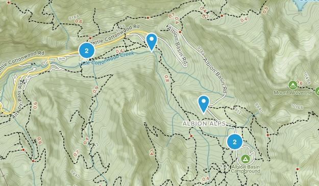 Alta, Utah Wild Flowers Map