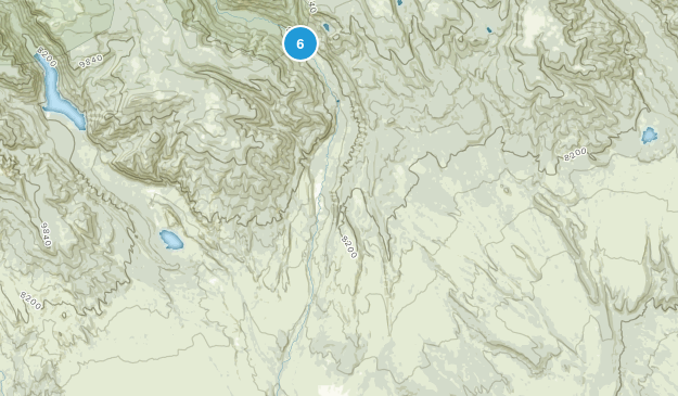 Altonah, Utah Birding Map