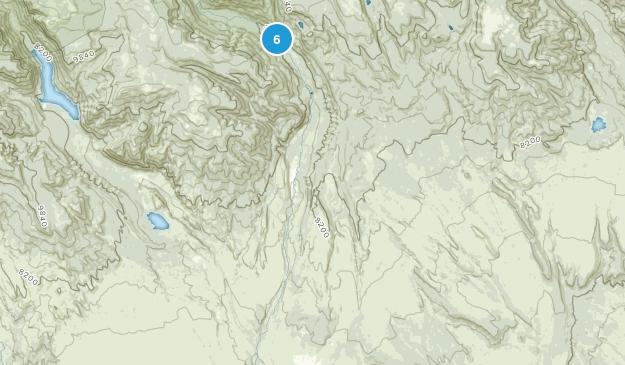 Altonah, Utah Dog Friendly Map