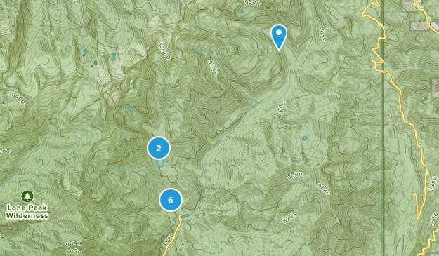 American Fork, Utah Forest Map
