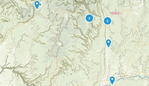 Bluff, Utah Birding Map