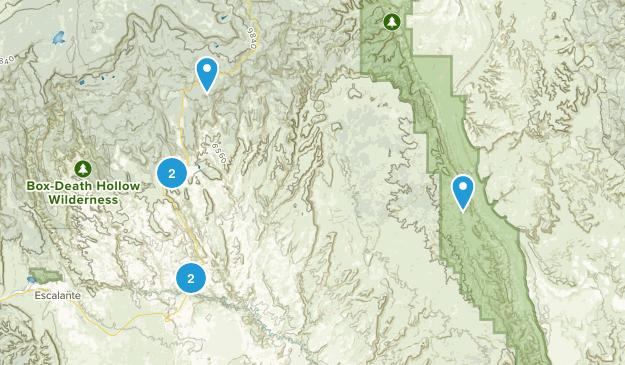 Boulder, Utah Birding Map