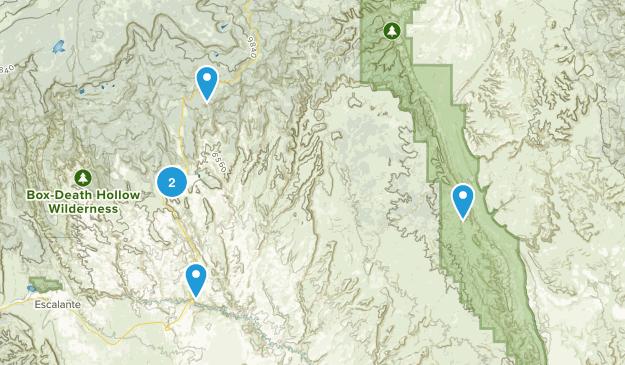 Boulder, Utah Bird Watching Map