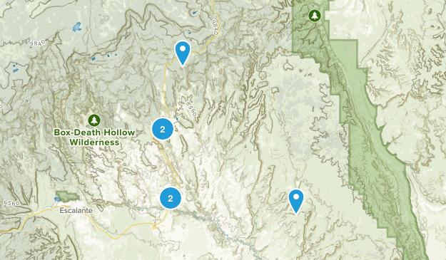 Boulder, Utah Wildlife Map