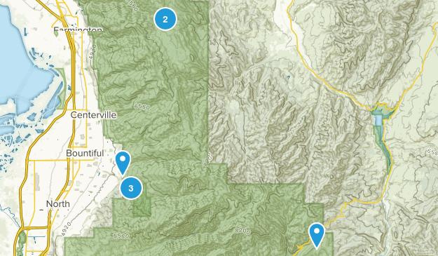 Bountiful, Utah Forest Map