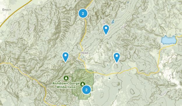 Brian Head, Utah Forest Map