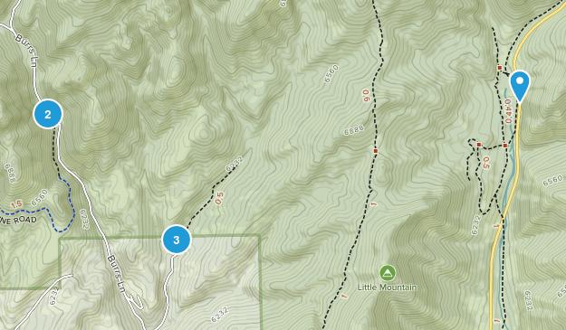 Emigration Canyon, Utah Wild Flowers Map