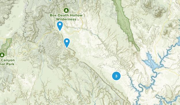 Escalante, Utah Wild Flowers Map