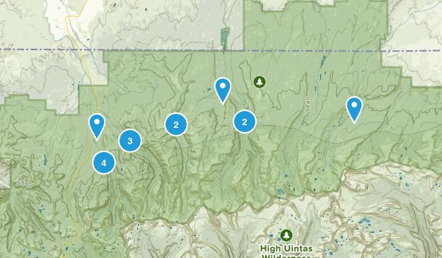 Evanston, Utah Forest Map