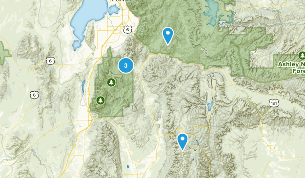 Fairview, Utah Wild Flowers Map