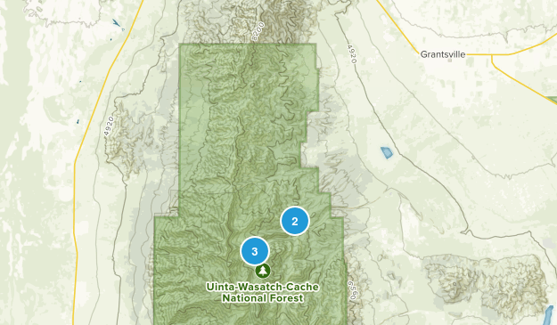 Grantsville, Utah Dogs On Leash Map