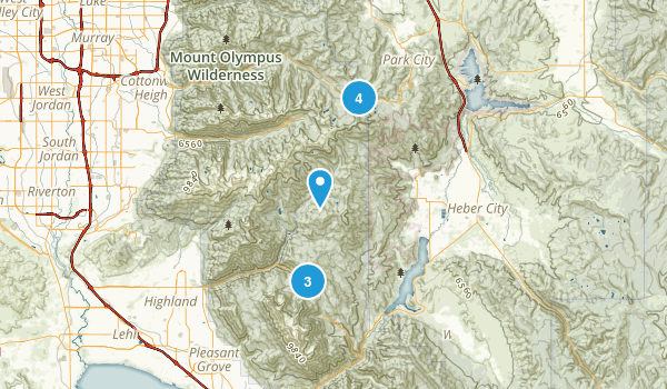 Midway, Utah Forest Map
