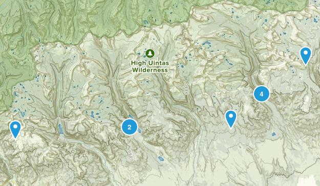 Roosevelt, Utah Dog Friendly Map