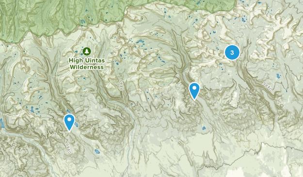 Roosevelt, Utah Dogs On Leash Map