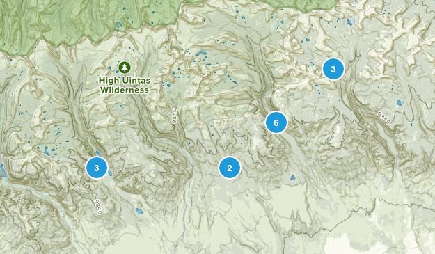 Roosevelt, Utah Forest Map