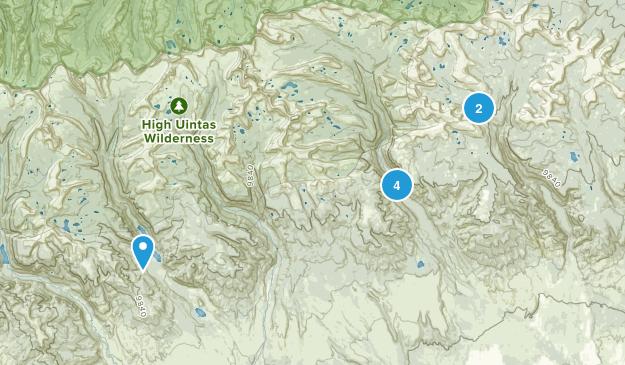 Roosevelt, Utah Walking Map