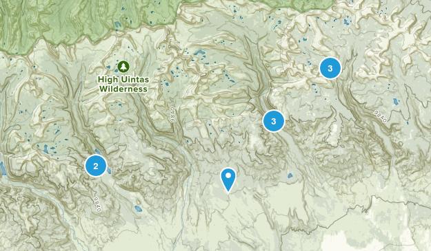 Roosevelt, Utah Wild Flowers Map